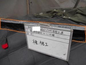 DSCN0231 - コピー