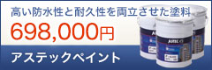アステックペイント 698,000円